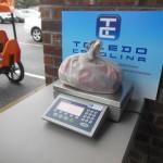 Toledo Carolina Candy Weigh Scale (6)